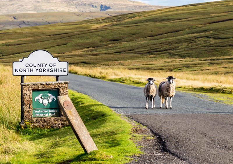 Why visit Yorkshire?
